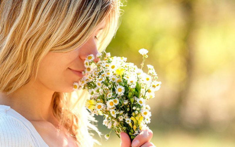 Treat allergies with herbs