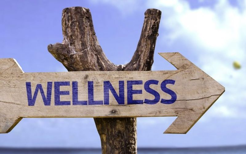 The OLON Holistic Health & Wellness Club now in Glyfada