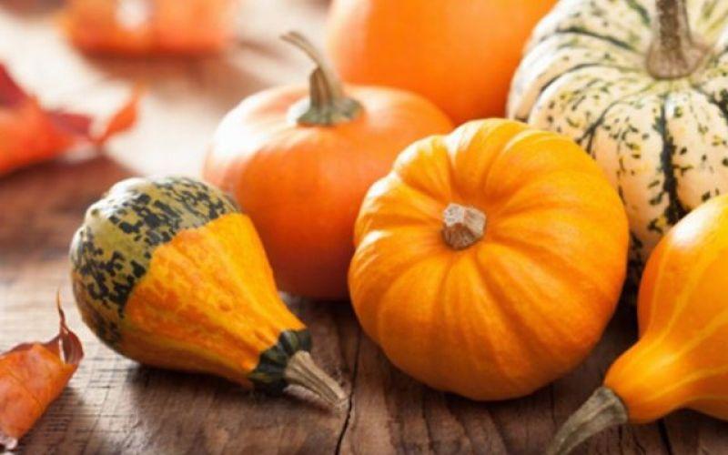 Pumpkin: The Queen of Autumn