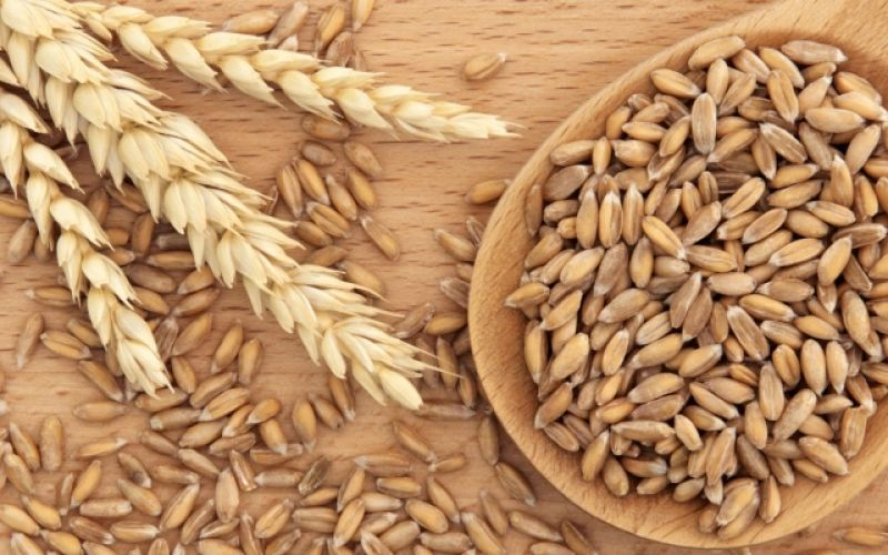 Dinkel flour - why should we include it to our nutrition
