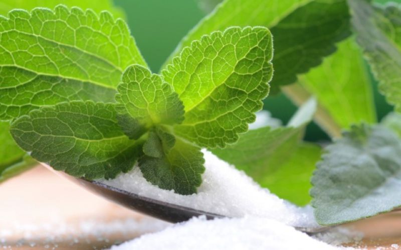 Stevia, why we use it instead of sugar