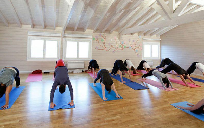 Yoga and Ecology